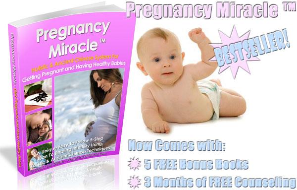 Pregnancy Miracle Book - Lisa Olson